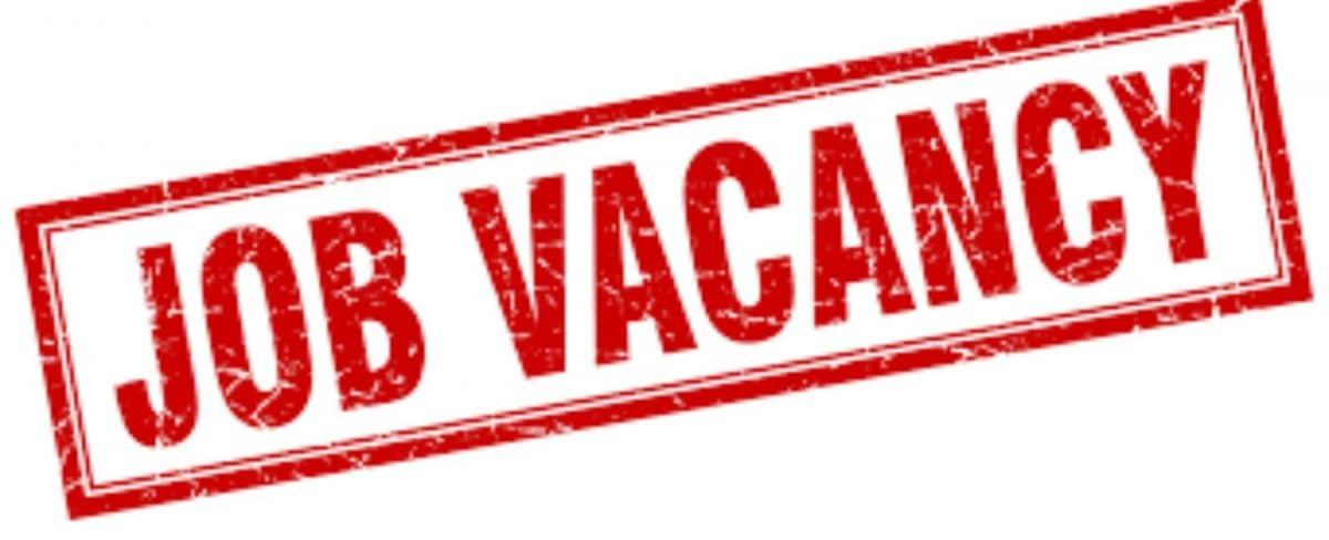 job Vacancy apply Now